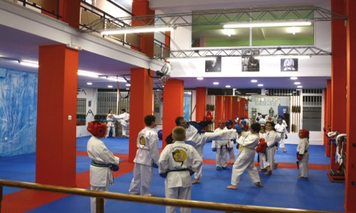 karate egaleo